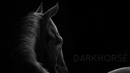 dark_horse_by_meihua