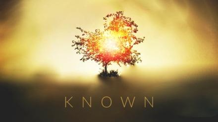 known_v6